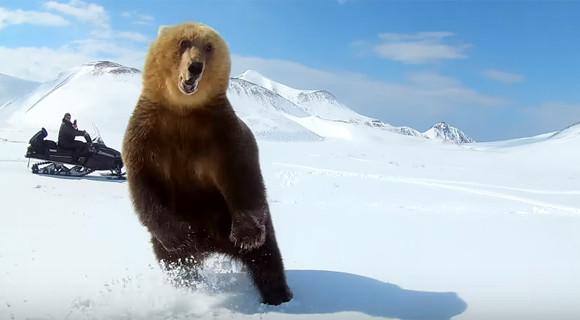 クマに襲われた?スノーモービルでクマを執拗に追い回していたグループのひどい行動が物議をかもす(ロシア)
