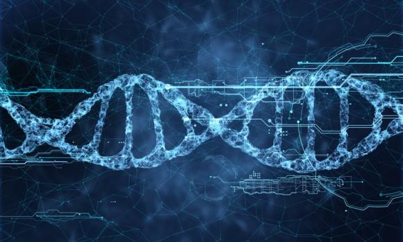 「暗黒DNA」の存在が進化の定義を変える可能性が示唆される(英研究)