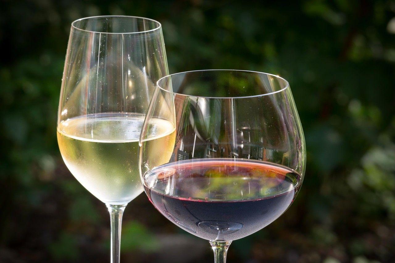 赤ワイン・ヨーグルト・・・実は日本人の体質に合わない食べ物とは?