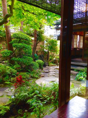 カフェ店内から庭を臨む(古桑庵)。