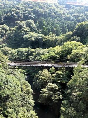 箱根 12年ぶりの水の音へ
