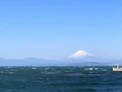 江の島に行ってきました