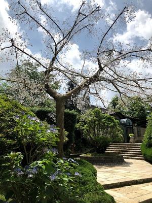 箱根 ガラスの森美術館