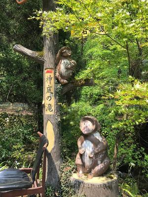 真庭 神庭の滝で猿を見る