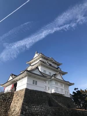 小田原城近辺は意外と楽しめる