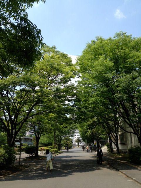 品川 東京海洋大学の学食でランチ