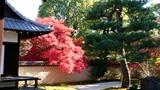 京都182