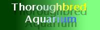 Thoroughbred Aquarium