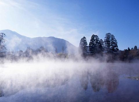 金鱗湖朝靄