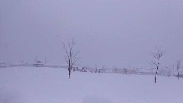 今から雪だるま作る