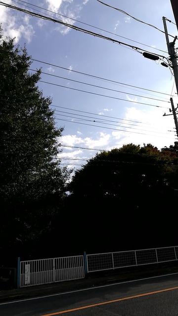 【実況】東京から仙台の水族館まで徒歩で行く 4歩目
