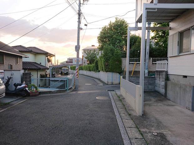 IP3Hu31