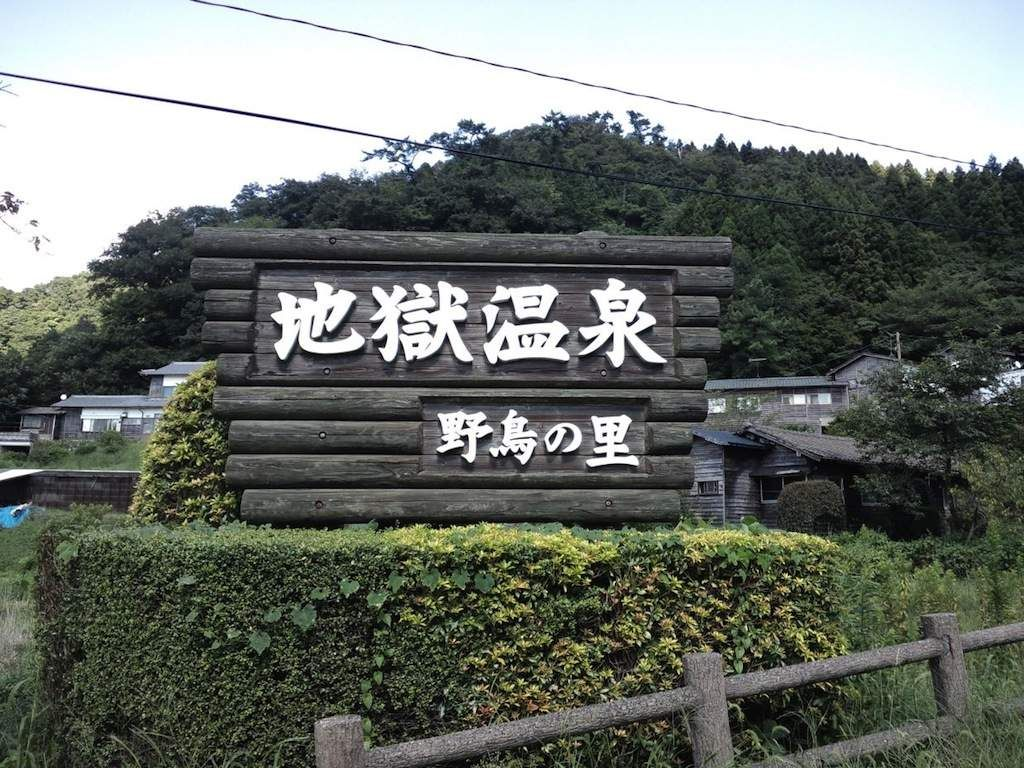 自転車で熊本市内から阿蘇山 ...