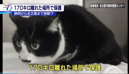 SnapCrab_NoName_2018-12-26_21-12-4_No-00