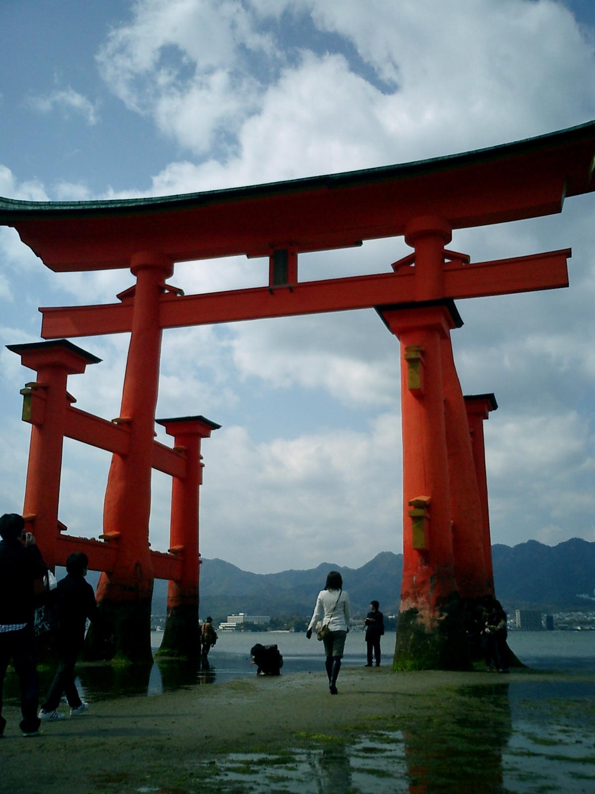 厳島の画像 p1_6
