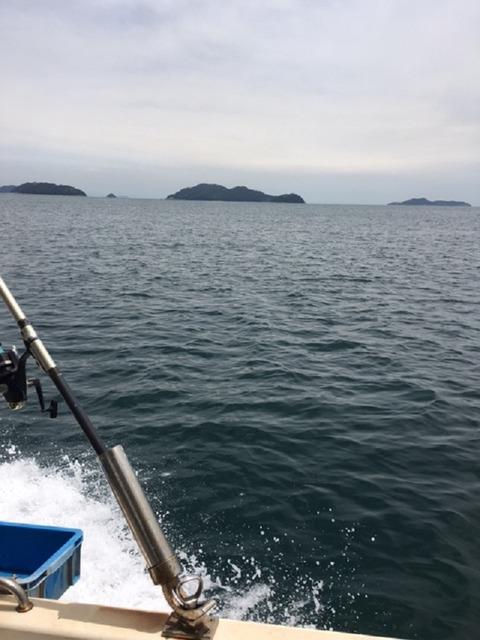 2017-6-17アジ釣り-3