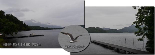 野尻湖畔190712