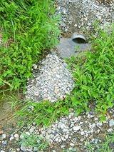 排水不良2
