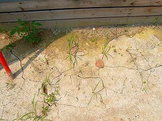 床下浸水の跡 小国