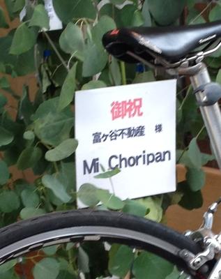 MiChoripan