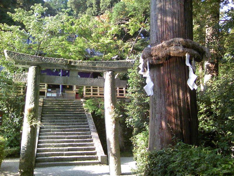 今日の高鴨神社は晴天です!