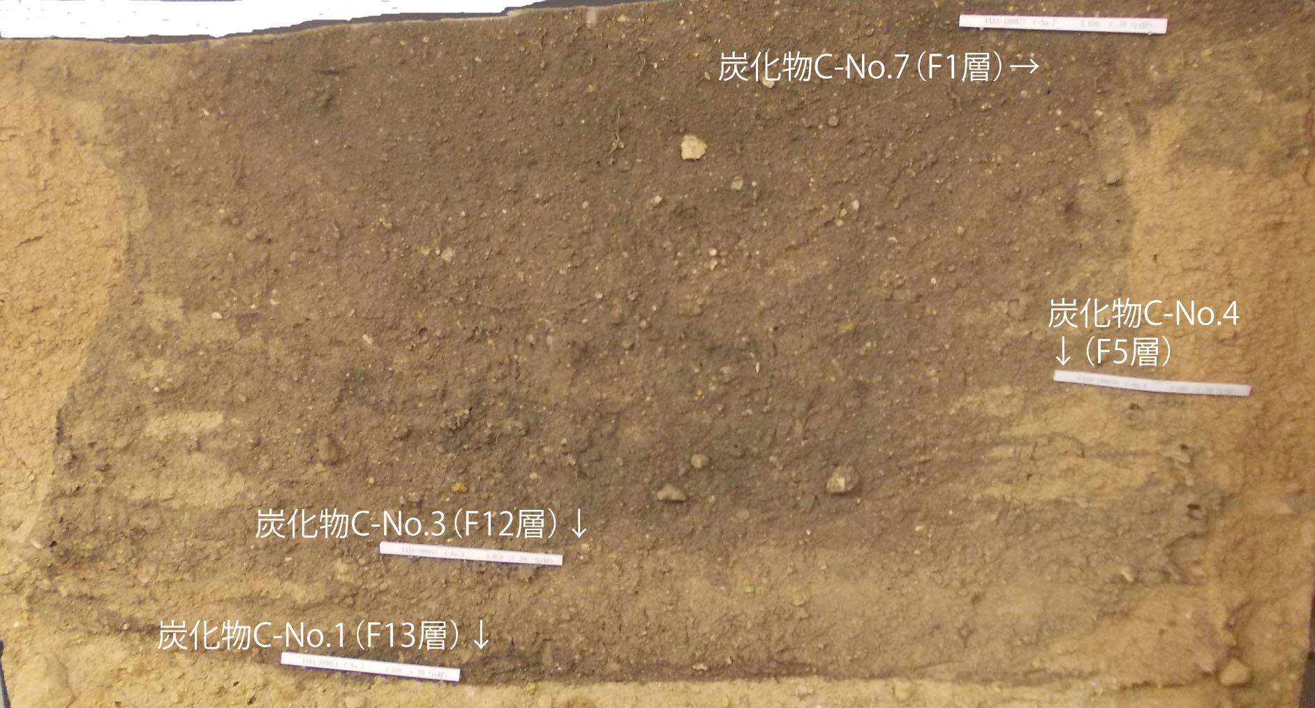 縄文時代の土坑の年代測定結果が...