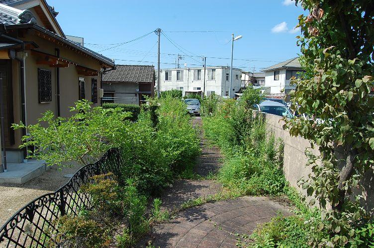 妙慶町 草刈ビフォー03