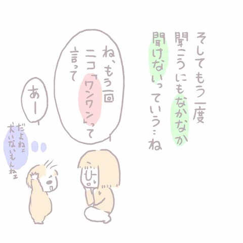 IMG_6257