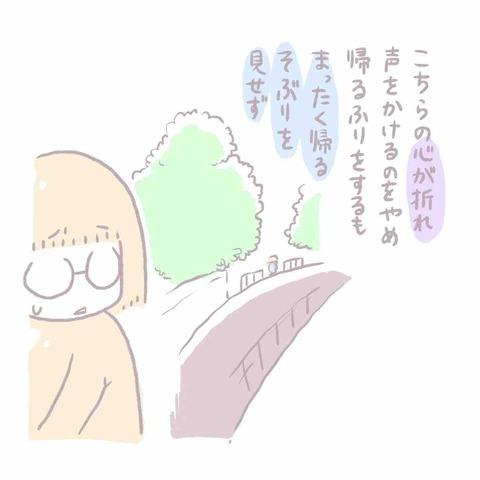 IMG_6348
