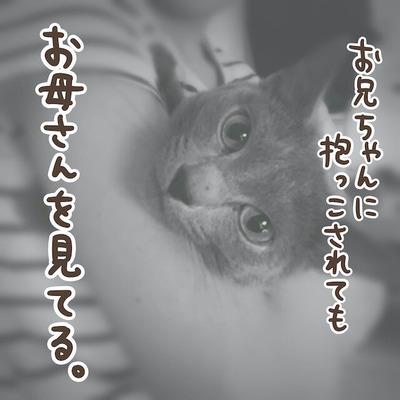 JPEGイメージ-0F82D373C9E8-1