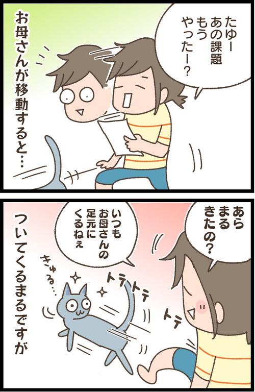 IMG_4032