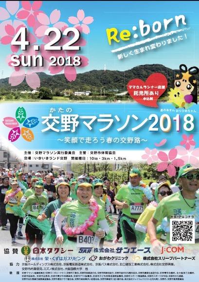 Katano Marathon 2018 poster