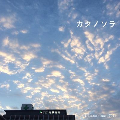 写真 2016-02-04 14 54 27