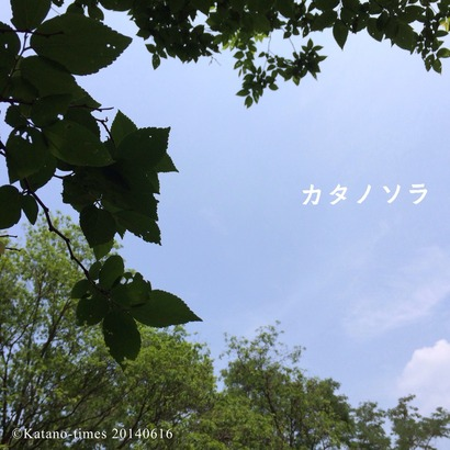 2014-06-15-16-05-13