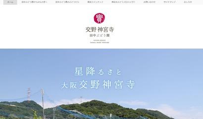 田中ぶどう園ウェブサイト