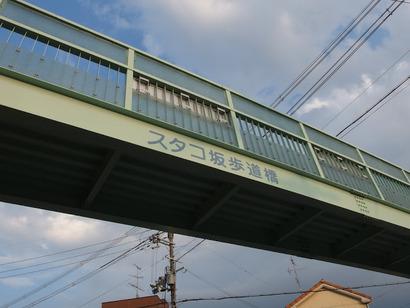 P6205255