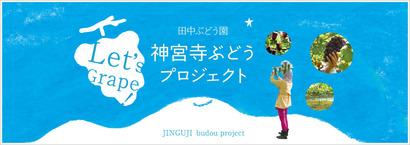 jinguji_project1