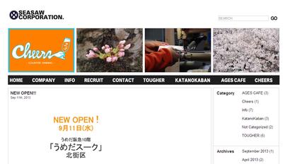 seasaw_website
