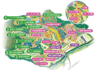 私市植物園園内MAP
