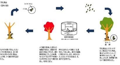 林野庁ホームページ