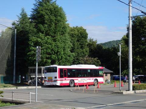 P8130035