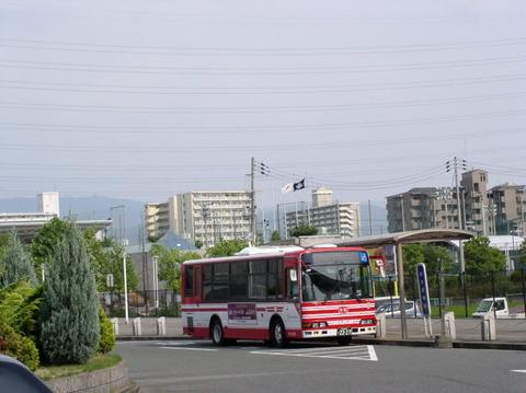 P7240025-01