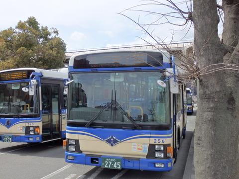 P3180051