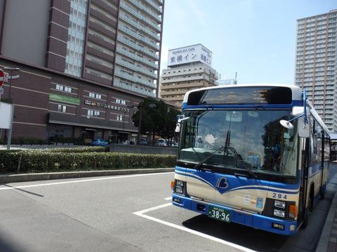 P3180049a