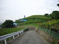 20100715_合名山南斜面遠景