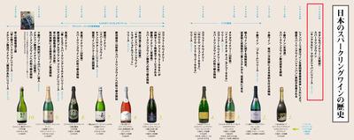 20100709_日本のスパークリングワインの歴史