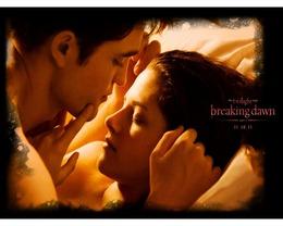 breaking_dawn15