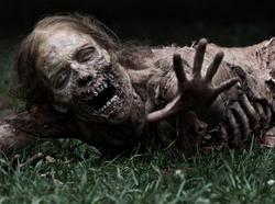 Walking-Dead-13