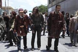 Walking-Dead-12