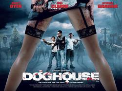doghouse7